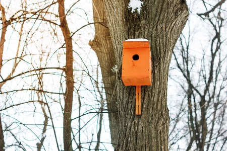 Birdhouse or nesting box on tree in a winter park Stock Photo