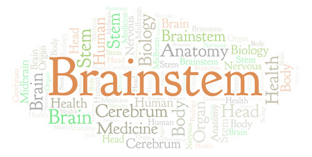 Brainstem word cloud. Wordcloud made with text only.