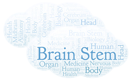 Brain Stem word cloud. Wordcloud made with text only.
