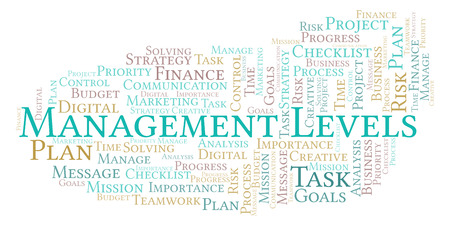 Management Levels word cloud, made with text only