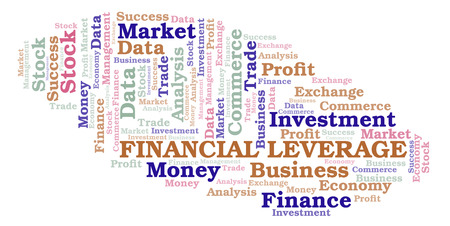 Financial Leverage word cloud, wordcloud made with text only.