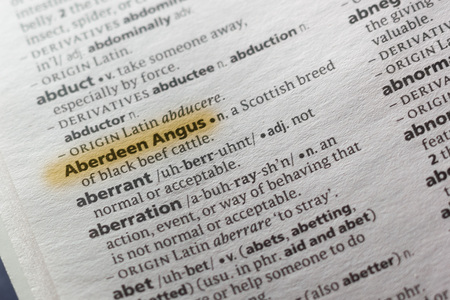 The word or phrase Aberdeen Angus in a dictionary highlighted with marker.