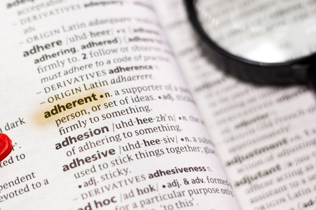 The word or phrase Adherent in a dictionary highlighted with marker.