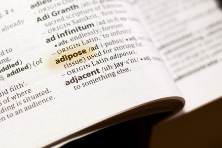 The word or phrase Adipose in a dictionary highlighted with marker.