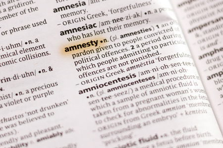 The word or phrase Amnesty in a dictionary highlighted with marker.