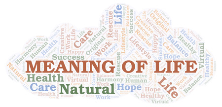 Meaning Of Life word cloud. Wordcloud made with text only.