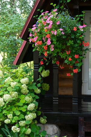 Beautiful flowerbed with flowers and decorative plants near the country house.