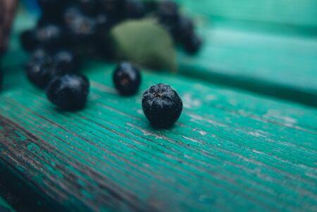 Black berries on the green wood
