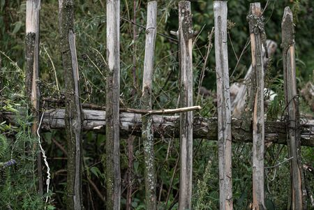 Fence in a contry made with wooden rods. 写真素材