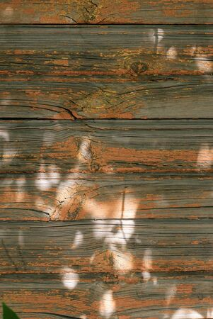 An Old vintage wooden wall texture background. Фото со стока