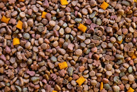 Top view of colorful dry pet food.