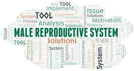 Male Reproductive System typography vector word cloud. Wordcloud collage made with the text only.