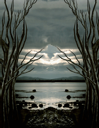 illustration of trees leading to a river with horizon