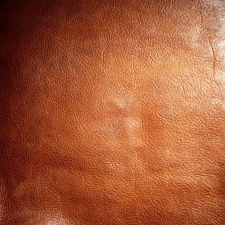 shiny dark brown animal leather texture material background Imagens