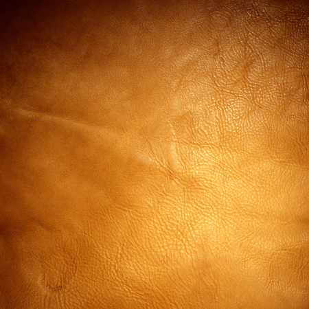 shiny light brown animal leather texture material background