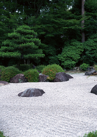 Japanese outdoor garden pathway with green bushes and stone flooring background