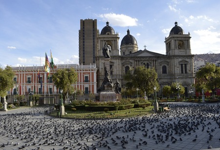 murillo: Pigeons La Paz Plaza Murillo