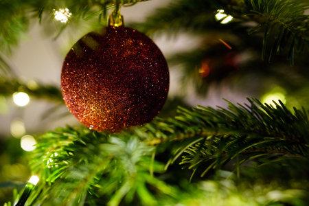 Christmas and Christmas Tree Decoration 写真素材 - 167229264