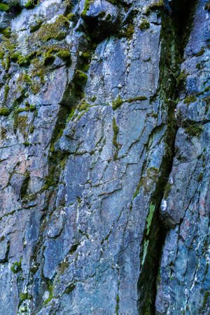Background and structure Moss and furrows in various rock faces Reklamní fotografie