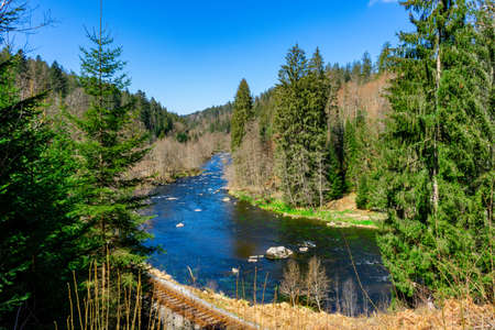 Hike to the Castle Ruins of Altnussberg in the Bavarian Forest