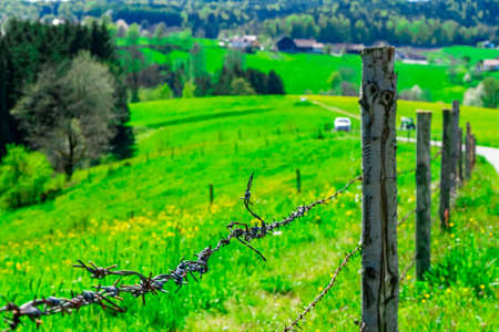 Barbed Wire Fence on a meadow in the bavarian Forests Germany