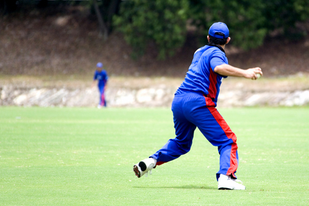 cricket game: Cricket game fielder in action. Stock Photo