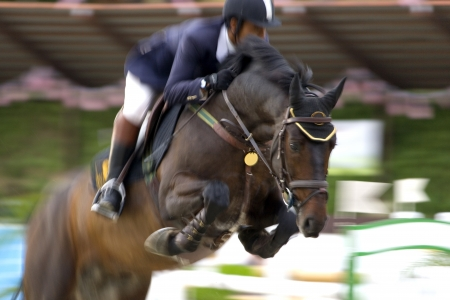 game show: Image of an equestrian competitor in action with intentional blurring to portray speed.
