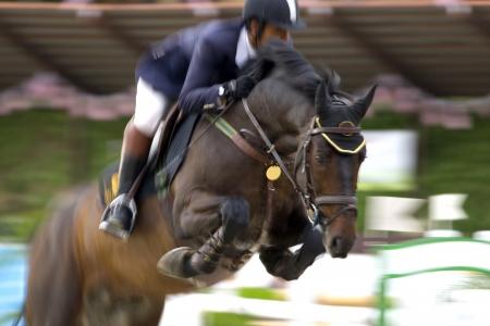 caballo saltando: Imagen de un competidor ecuestre en la acción intencional con una imagen borrosa a la velocidad. Foto de archivo