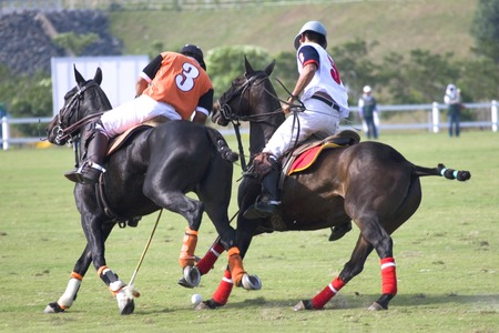 matches: Polo