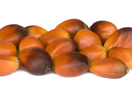 to refine: Isolated macro image of oil palm fruits. The seeds in these fruits are extracted and processed into palm oil. Stock Photo