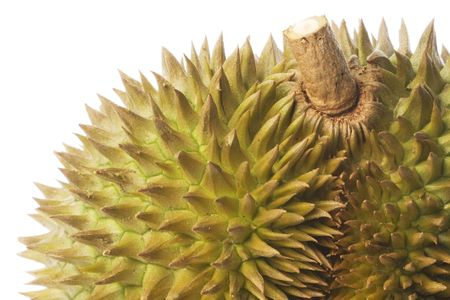 Macro image of the thorny exterior of a Durian. Stock Photo - 3592393