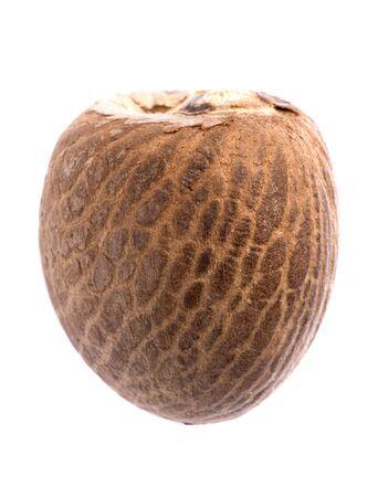 betelnut: Isolated macro image of a betel nut. Stock Photo