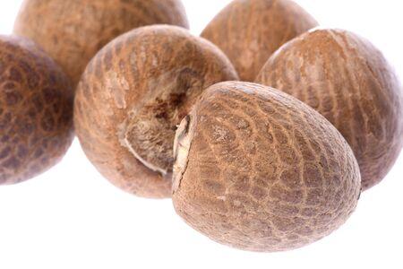 Isolated macro image of betel nuts. Stock Photo