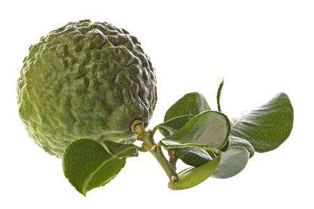 kaffir: Isolated macro image of a Kaffir Lime and leaves.