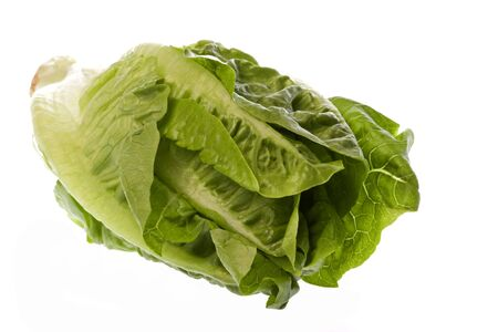 romaine: Isolated macro image of a romaine lettuce.