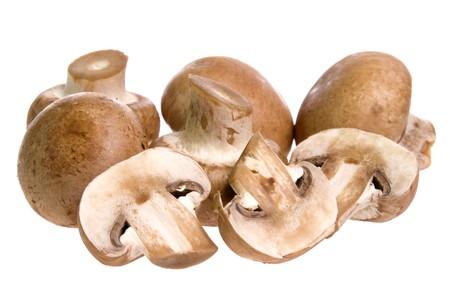 mycelium: Isolated image of Swiss brown mushrooms.