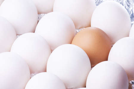 Isolated image of duck and chicken eggs. photo