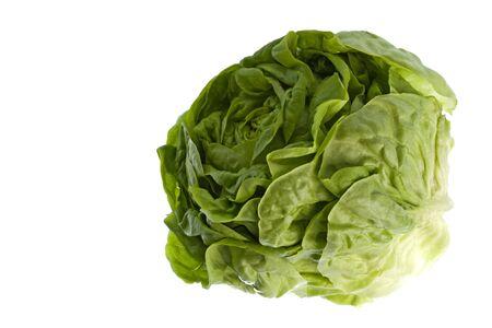 Isolated macro image of a butterhead lettuce. Stock Photo