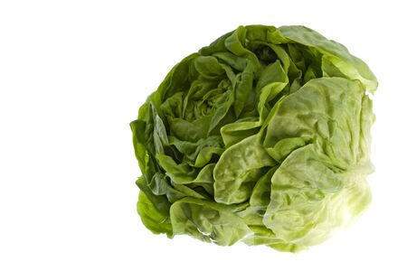 Isolated macro image of a butterhead lettuce. Stock Photo