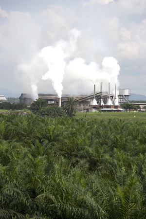 Image of a palm oil factory with an oil palm estate in the foreground at Johore, Malaysia.