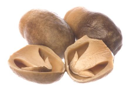 funghi: Immagine isolata di funghi di paglia in scatola, noto anche come funghi di paglia di risaia. Archivio Fotografico
