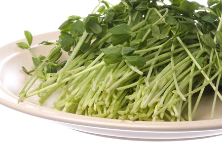 bean sprouts: Isolated image of snow pea sprouts on a plate.