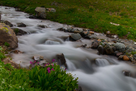 soft peak: A soft flowing mountain stream with purple wildflowers