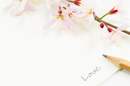 Soft selective focus of pink flowers and pencil with handwriting love on white paper on white background