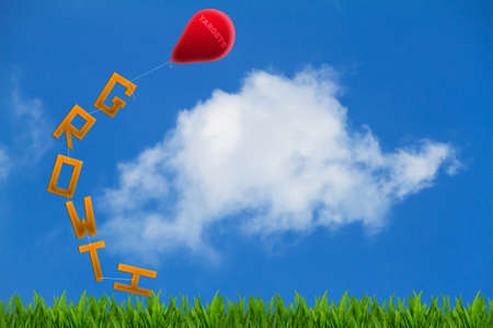 targets: The word growth on grass tied up to red balloon with word targets on cloudy blue sky background,  business goal concept