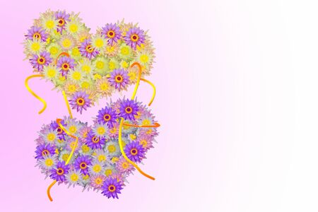 heart shaped: Two pink purple yellow heart shaped lotus flowers tied up with rope on pale pink background