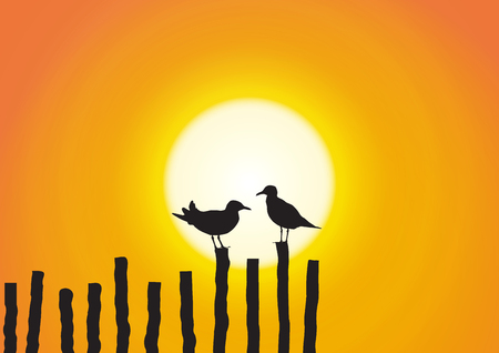 Silhouette of two seagull sitting on timber on golden sunset background
