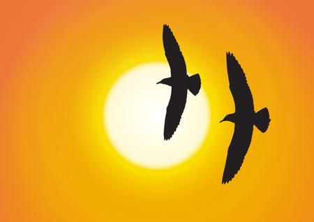 Silhouette of two seagull flying on golden sunset background vector illustration Illustration