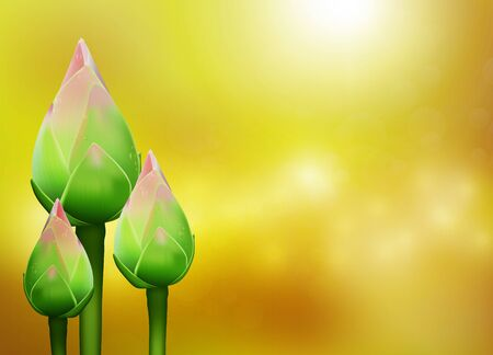 Realistic 3d Thai pink lotus buds with water drop on blurred golden bokeh background vector illustration