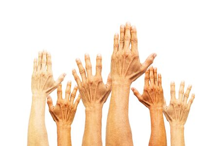 Group of hands raising on white background Stockfoto